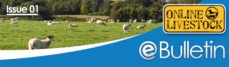 Online Livestock - eBulliten - Issue 01
