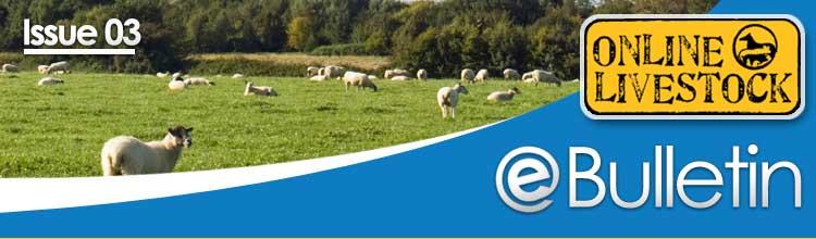 Online Livestock - eBulliten - Issue 03