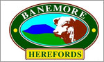 Banemore Herefords Bull Sale