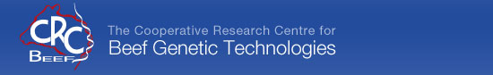 Beef CRC - Beef Genetic Technologies