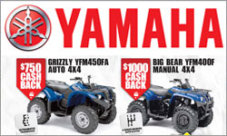 Yamaha Bear Necessities