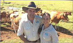 Maleny Dairies overwhelmed by support since losing government tender to international companies.