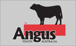 Angus Youth