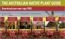 The Australia Native Plant Guide