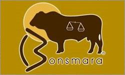Featured Breed - Bonsmara Cattle Breeders Association of Australia