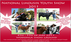 National Limousin Youth Show