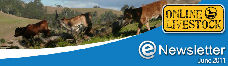 Online Livestock - eNewsletter