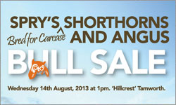 """Spry's """"Bred for Carcase"""" Bull Sale"""