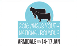 Angus Youth National Roundup 2016