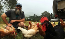 Queensland Egg Farmer