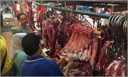 Slaughter Ban Unlikely To Last
