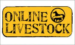 Online Livestock