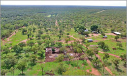 Top End's Margaret Downs Station sold to Northern Territory pastoral family