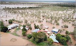 Social media challenge for farmers brings hope amid devastating floods
