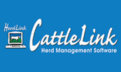 What Is CattleLink?